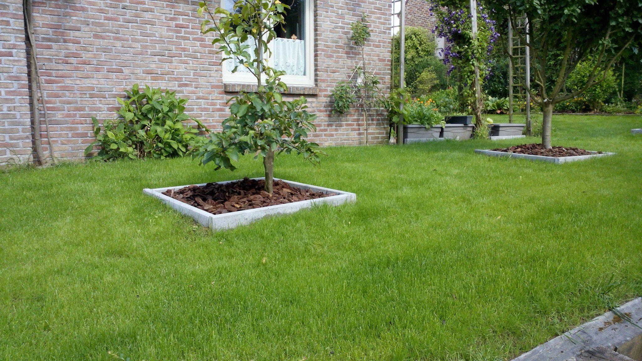 nouveau gazon avec semences jardinier laurent entreprise de jardin. Black Bedroom Furniture Sets. Home Design Ideas